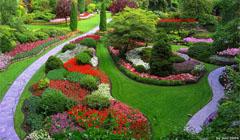 Советы по уходу за осенним садом